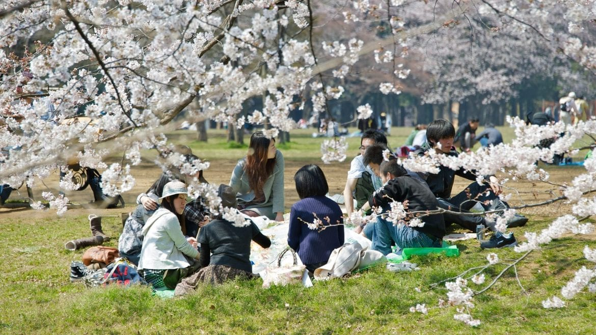 Japan Tokyo Yoyogi park is included in Japan tours offered by Asia Vacation Group.